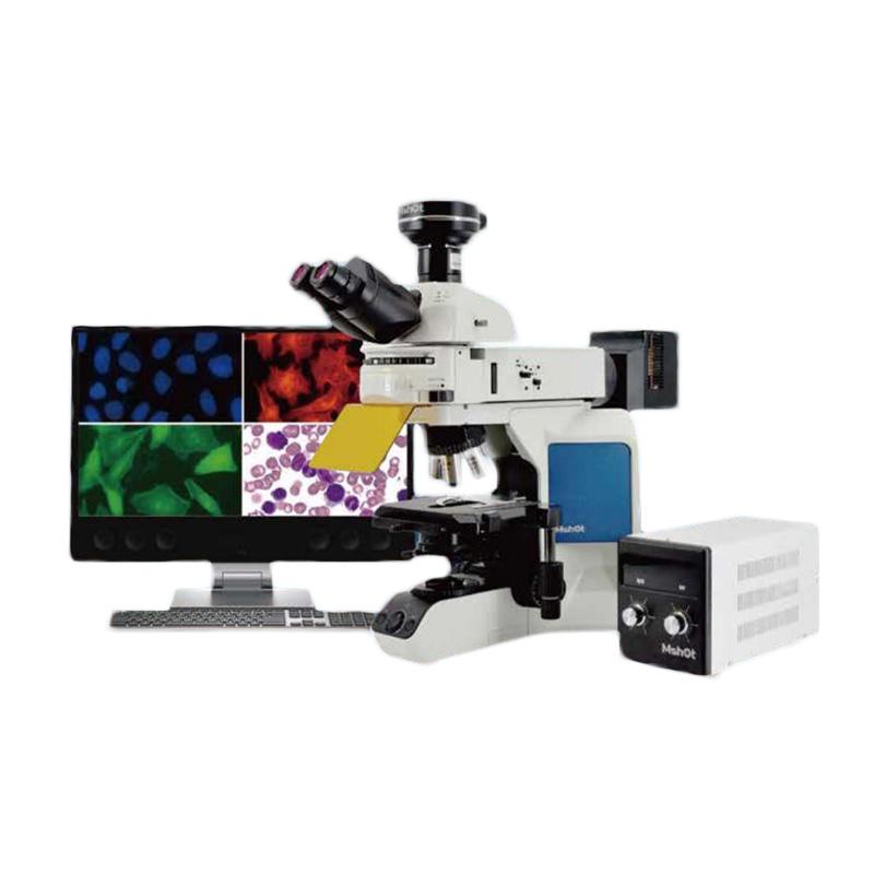 明美 MSHOT 荧光生物显微镜 MF43-M