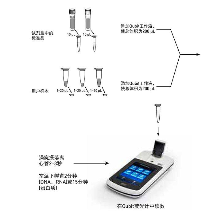 ABI 荧光光度计 Qubit4.0使用方法