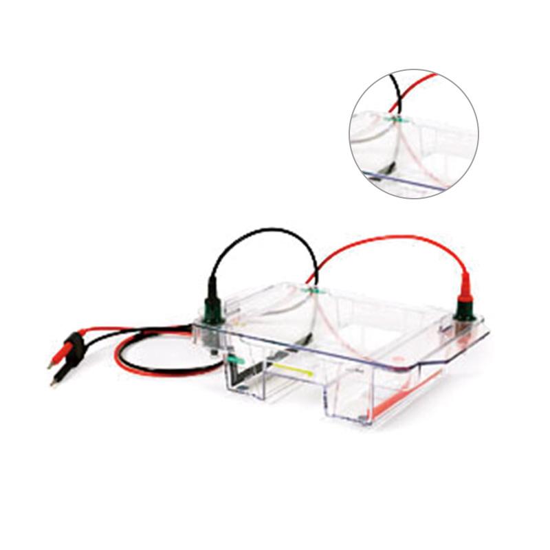 伯乐 Bio-Rad Wide Mini ReadySub-Cell GT Cell 电泳槽 1704489