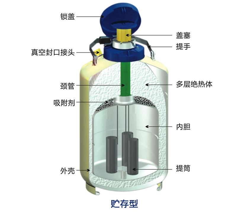 金凤 液氮型液氮生物容器 YDS-10L产品结构