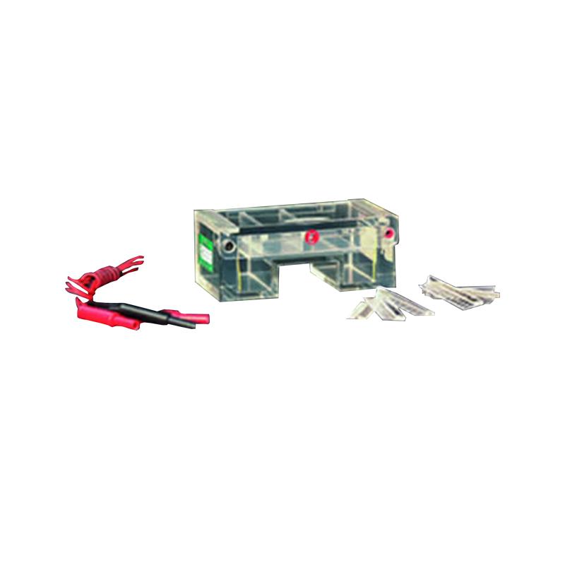 六一   琼脂糖水平电泳仪(槽)(小号)   DYCP-31C