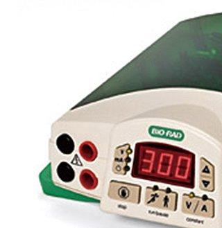 Bio-Rad伯乐 水平电泳槽 1704404产品优势