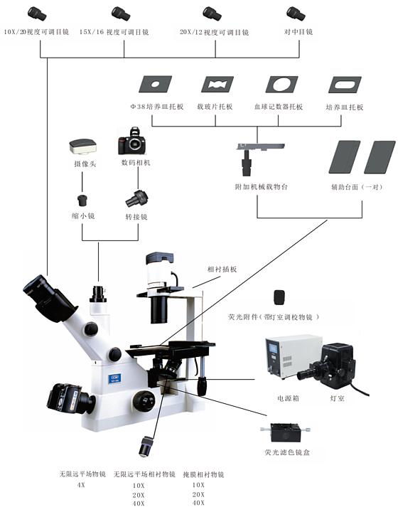 江南永新  倒置显微镜  XD-202产品结构
