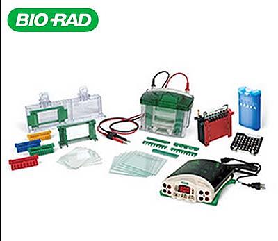 Bio-Rad伯乐 电泳组合套装 1658033产品优势