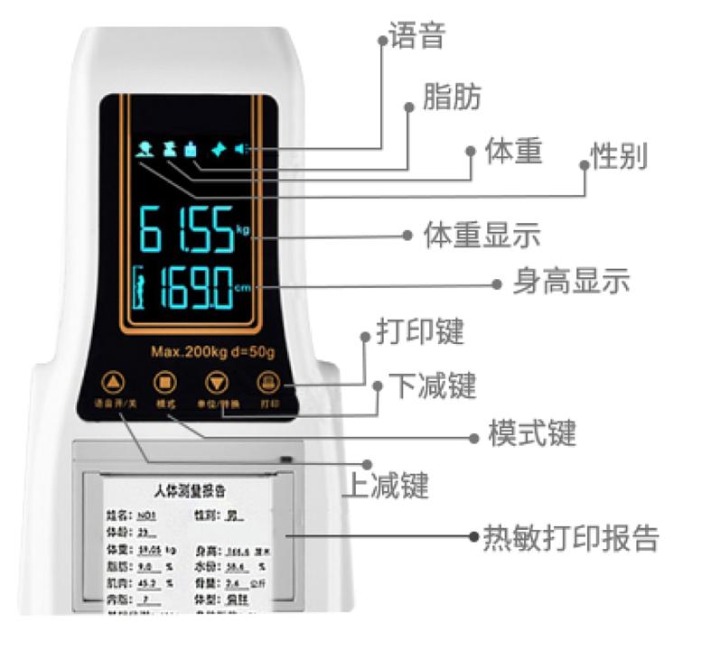 贝雅 超声波体脂分析仪 BYH07产品细节