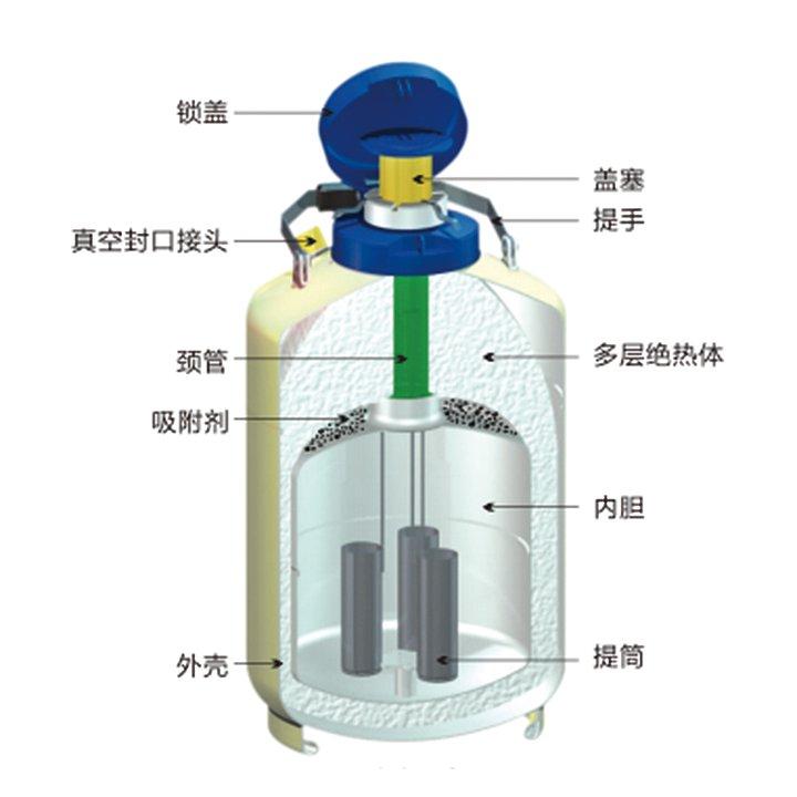 金凤   液氮生物容器贮存型   YDS-15优等品产品结构