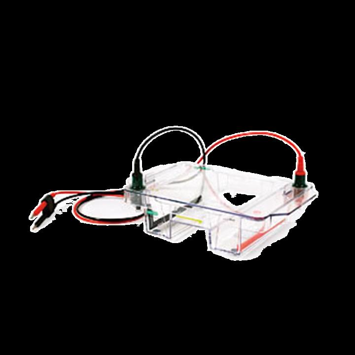 伯乐 Bio-Rad 宽式水平电泳槽 1704468基本信息