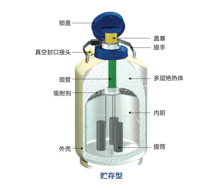 金凤 液氮生物容器贮存型  YDS-30-200优等品产品细节