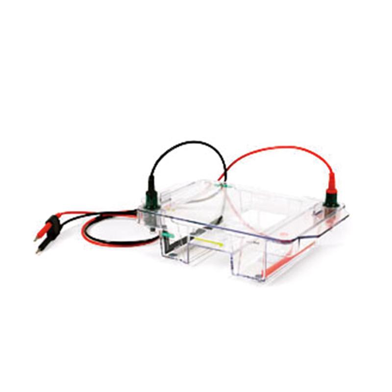 伯乐 Bio-Rad 宽式Mini水平电泳槽 1704469