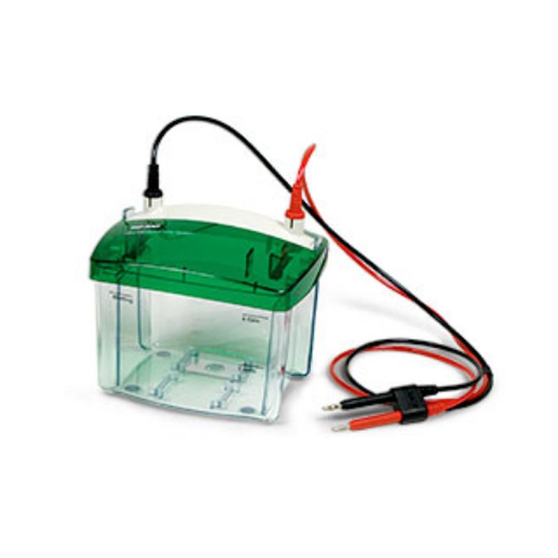 伯乐 Bio-Rad 小型垂直电泳槽 1658040