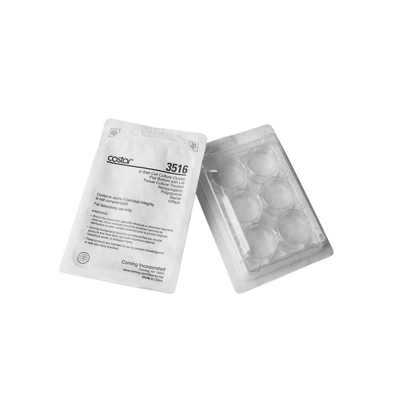 康宁 Corning 6孔培养板 标准透明板 3516