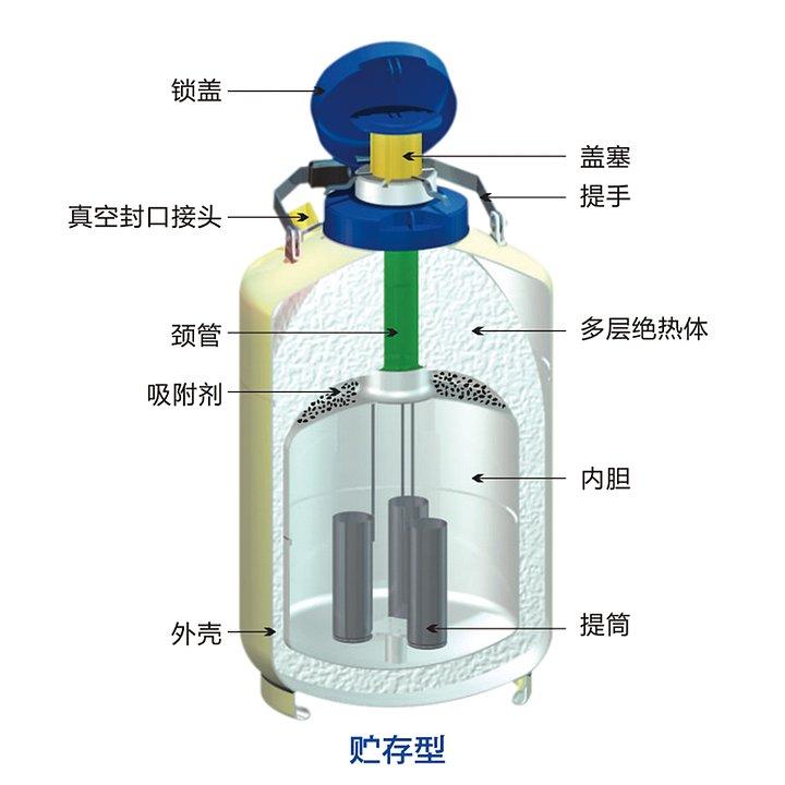 金凤 液氮生物容器贮存型 YDS-30优等品产品细节