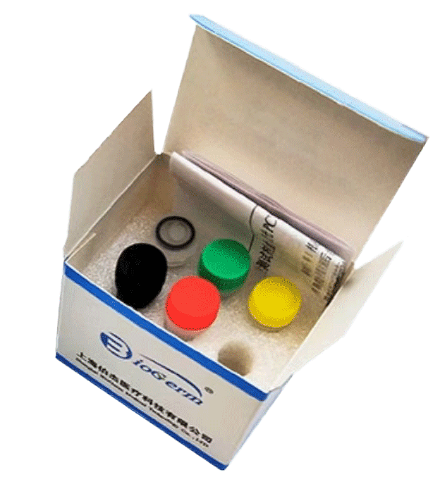 伯杰 新型冠状病毒2019-nCoV核酸检测试剂盒(荧光PCR法) 50人份/盒基本信息