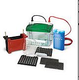 BioRad伯乐 小型Trans-Blot 转印槽 1703930产品优势