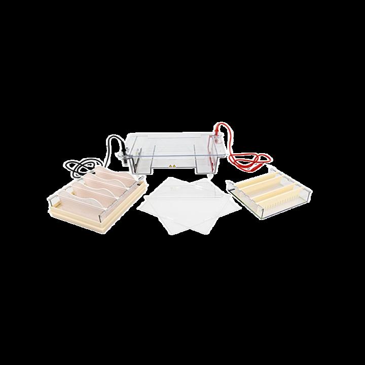 六一 琼脂糖水平电泳仪(槽)(中号)  DYCP-31E型基本信息