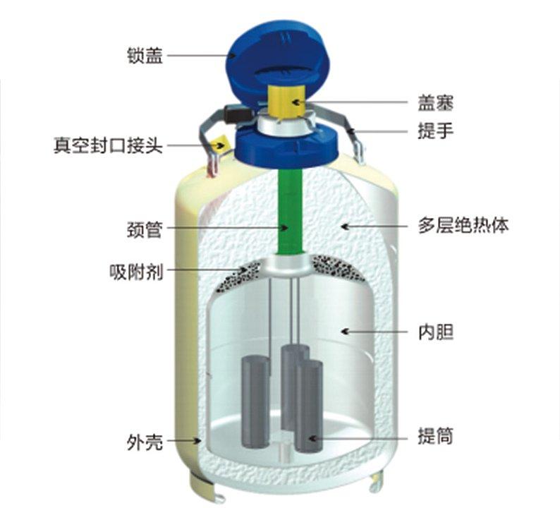 金凤 液氮生物容器贮存型 YDS-35-125优等品产品结构