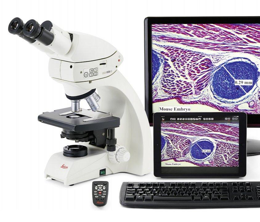 Leica徕卡 生物显微镜 DM500(双目)产品结构