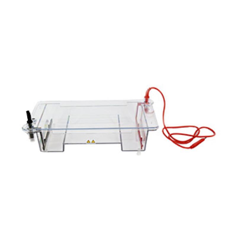 六一 琼脂糖水平电泳仪(槽)(中号)  DYCP-31E型