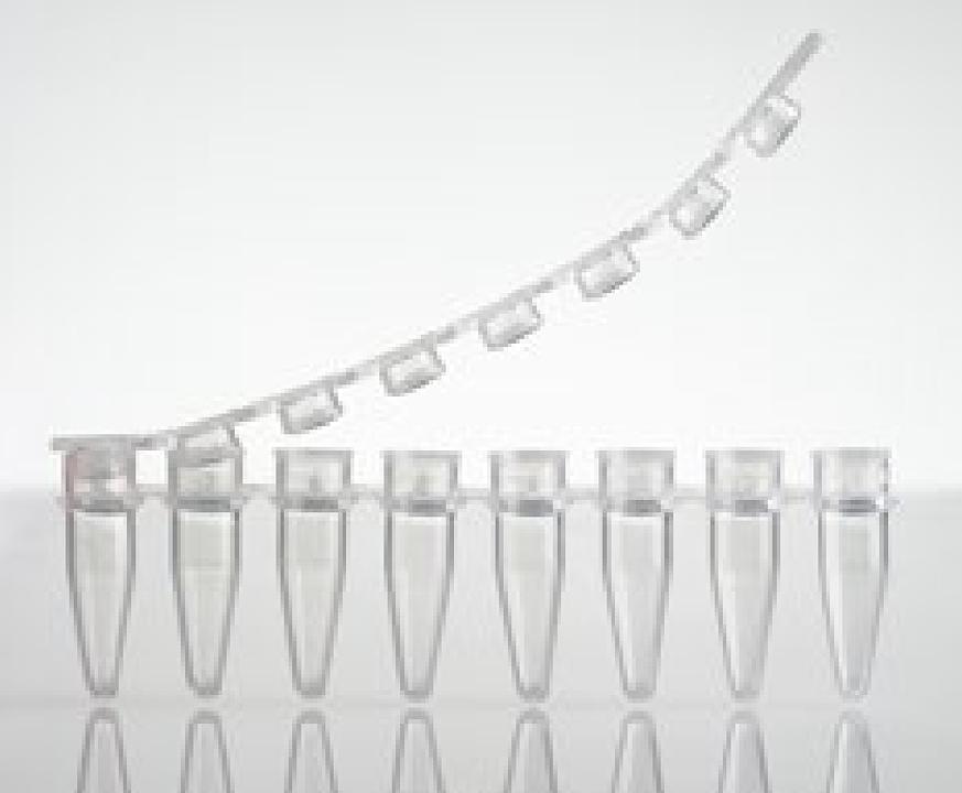 乐斐 LAVIBE PCR管 8联排管0.2毫升带平盖无色灭菌 2244020007产品优势