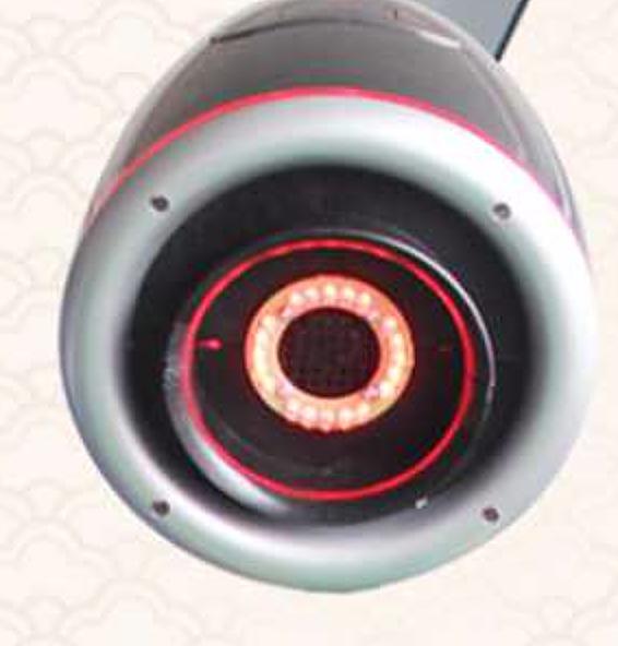 立鑫 艾灸仪 LXZ-600F产品细节