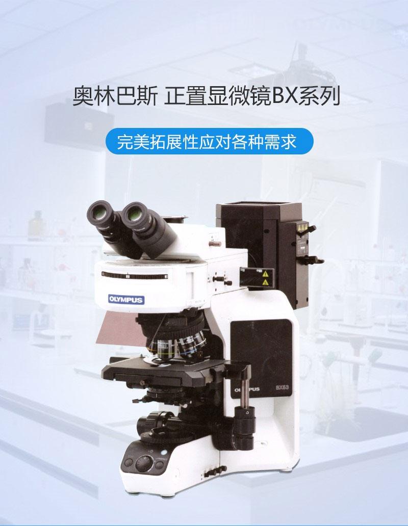 OLYMPUS奥林巴斯-研究级显微镜-BX53双目.jpg