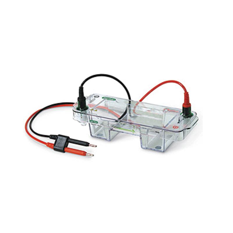 伯乐 Bio-Rad Mini-Sub-Cell GT 电泳槽 1704467