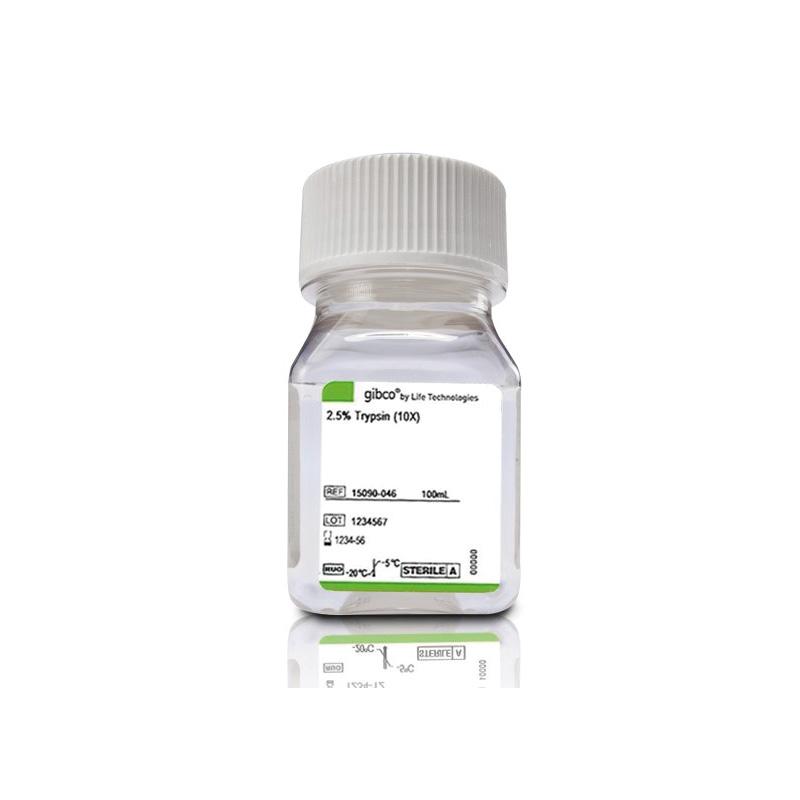 Gibco Trypsin 2.5% 100ml/瓶 15090046